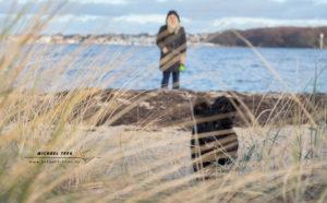Tierfotografie Kiel - Layla am Strand