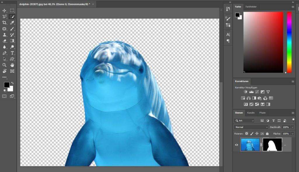 Schnellauswahlwerkzeug Photoshop
